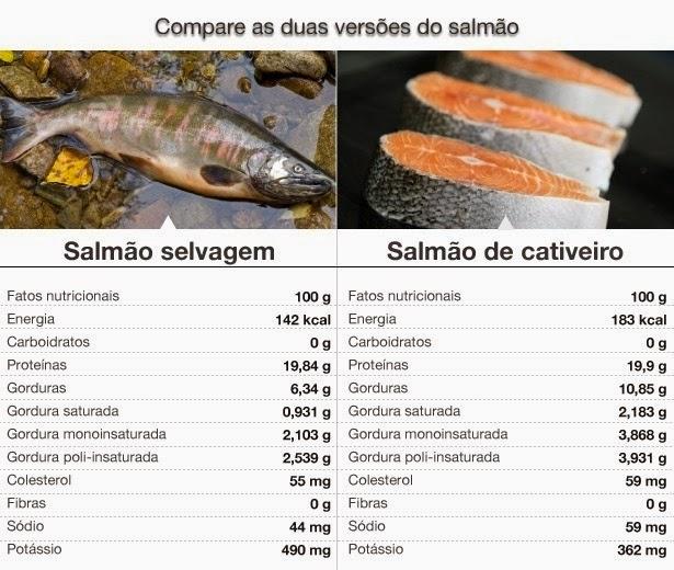 salmão selvagem e salmão de cultivo